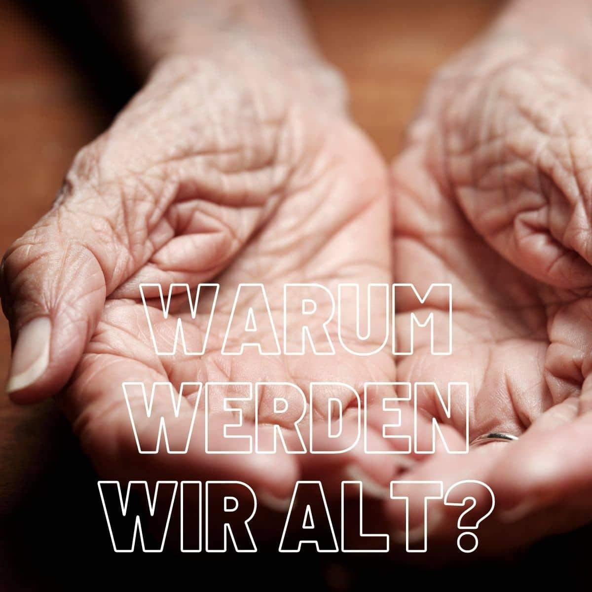 Warum werden wir alt? Toxine?